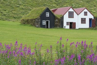 Skogasafn Turf Houses and Church in South Iceland-Bill Bachmann-Photographic Print