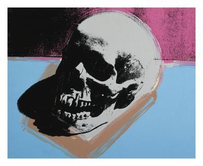 https://imgc.artprintimages.com/img/print/skull-1976-white-on-blue-and-pink_u-l-f8ckt20.jpg?p=0