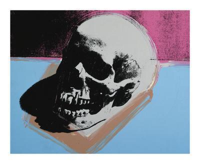 https://imgc.artprintimages.com/img/print/skull-c-1976-white-on-blue-and-pink_u-l-f44xns0.jpg?artPerspective=n