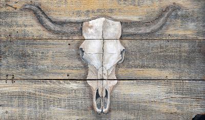 Skull Vintage Wood Sign--Wood Sign