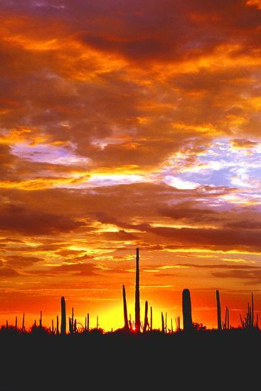 Sky a Fire I-Douglas Taylor-Photographic Print