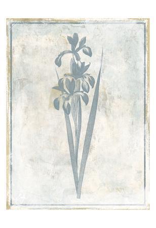 https://imgc.artprintimages.com/img/print/sky-floral-four_u-l-f93t0k0.jpg?p=0