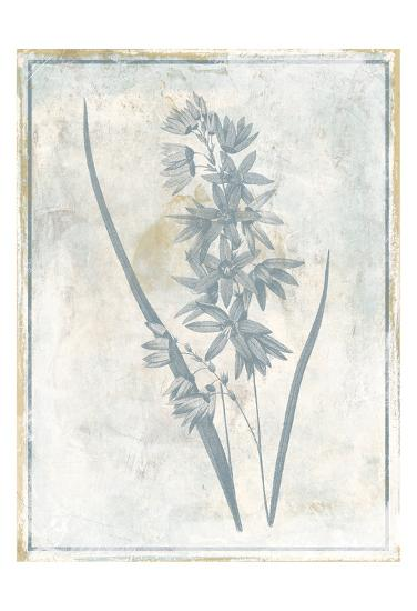 Sky Floral Three-Jace Grey-Art Print