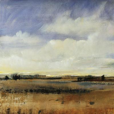 Sky View I-Tim O'toole-Giclee Print