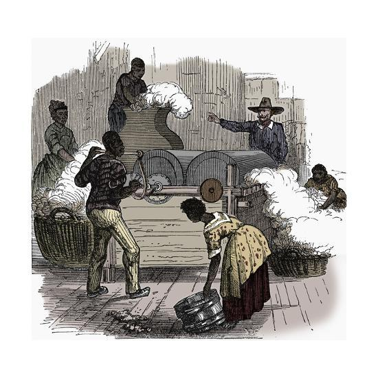 Slave labour on a cotton plantation in the southern states of America, 1860-Unknown-Giclee Print