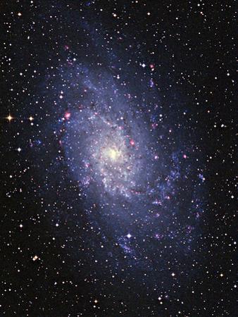 Pinwheel Galaxy (M33) by Slawik Birkle