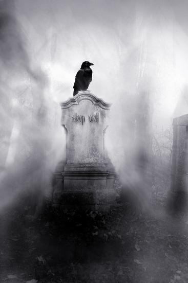 Sleep Well-Alexandra Stanek-Photographic Print