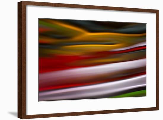 Sleeping Bird-Ursula Abresch-Framed Photographic Print