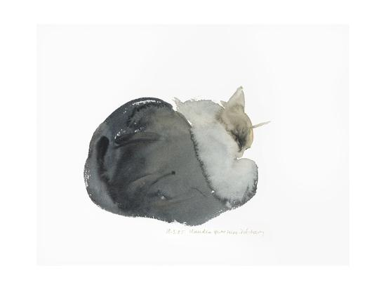Sleeping cat, 1985-Claudia Hutchins-Puechavy-Giclee Print