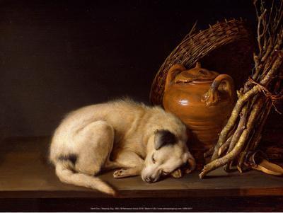https://imgc.artprintimages.com/img/print/sleeping-dog-1650_u-l-f8kil70.jpg?p=0