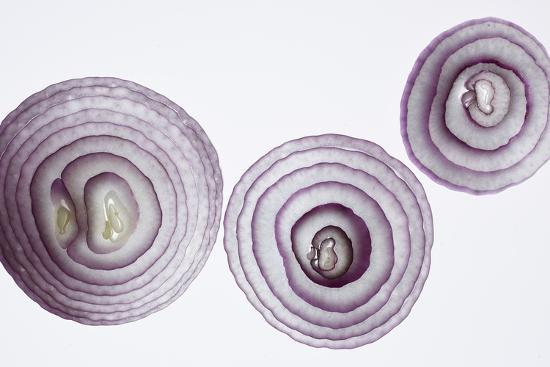 Slices of Red Onion-Rebecca Hale-Photographic Print