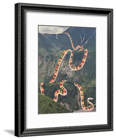 Slinky Snake-Danielle Kroll-Framed Giclee Print