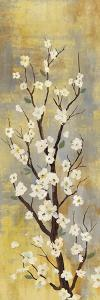 Blossoms II by Sloane Addison ?