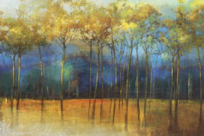 Melancholy by Sloane Addison