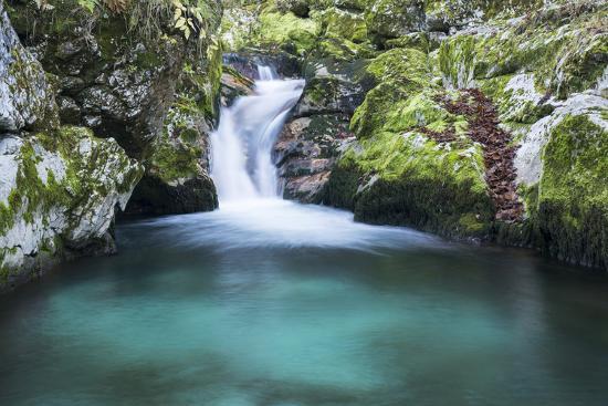 Slovenia. Small stream of pure mountain water cascades down mossy rocks.-Brenda Tharp-Photographic Print