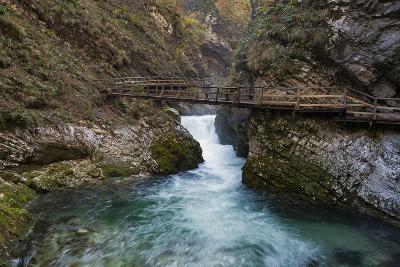 Slovenia, Vintgar Gorge, Triglav National Park-Simone Wunderlich-Photographic Print