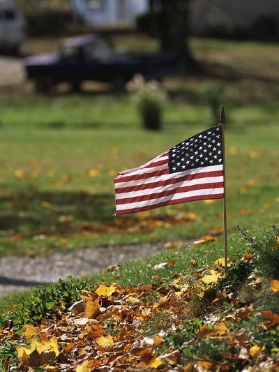 Small American Flag Posted in Yard-Bob Rowan-Photographic Print