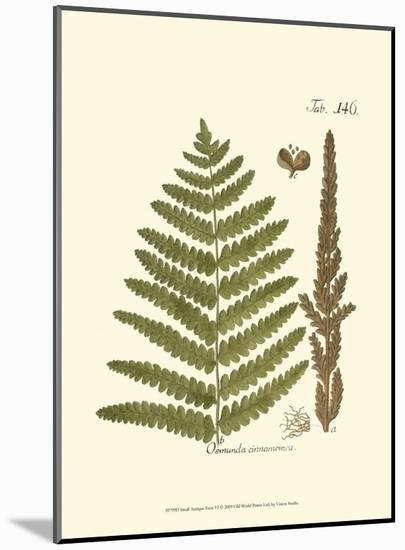 Small Antique Fern VI--Mounted Print