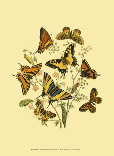 Small Butterfly Gathering I--Art Print