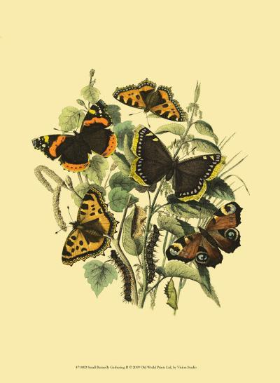 Small Butterfly Gathering II--Art Print