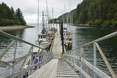 Small Commercial Fishing Boats Moored to a Floating Dock-Jonathan Kingston-Photographic Print