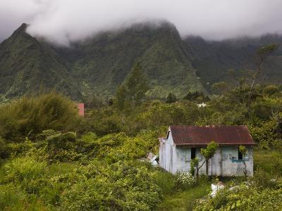 Small Creole-style cabin, Plaine-des-Palmistes, Reunion Island, France-Walter Bibikow-Photographic Print
