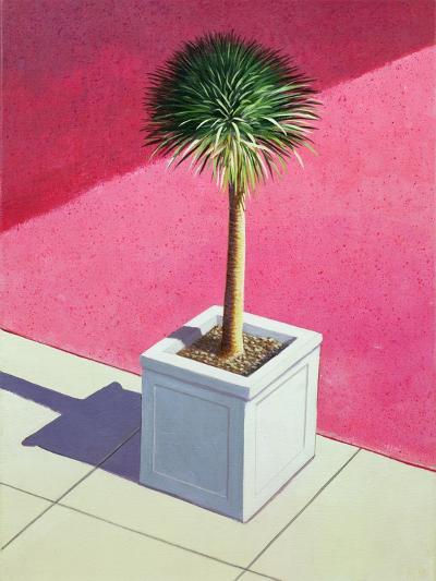Small Palm, 1995-Lincoln Seligman-Giclee Print
