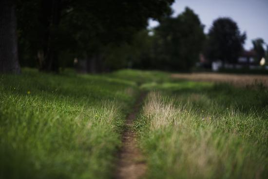 small path through a meadow-Benjamin Engler-Photographic Print