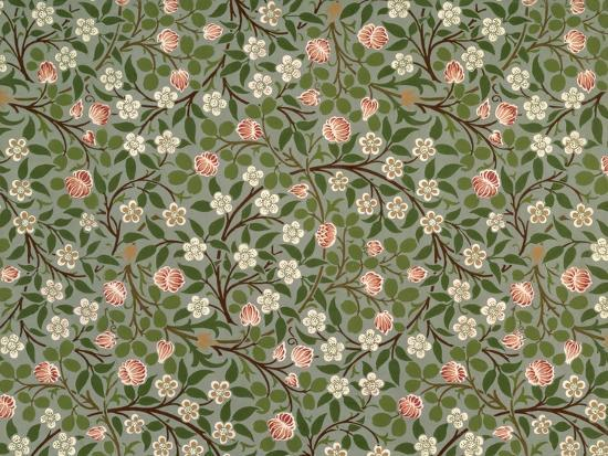Small Pink And White Flower Wallpaper Design Giclee Print By William