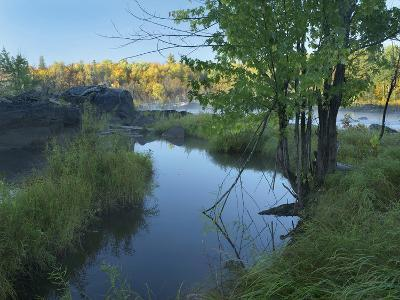 Small Pool Next to a River, Jay Cooke State Park, Minnesota-Tim Fitzharris-Photographic Print