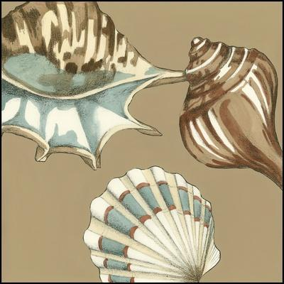 https://imgc.artprintimages.com/img/print/small-shell-trio-on-khaki-iii_u-l-q11ax7f0.jpg?p=0