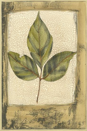 Small Spring Foliage II-Jennifer Goldberger-Art Print