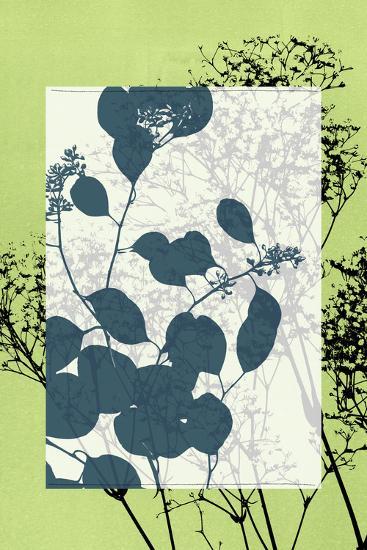 Small Translucent Wildflowers VII-Jennifer Goldberger-Art Print