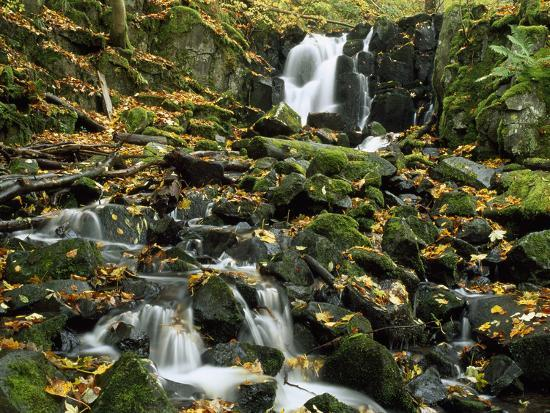 Small Waterfalls Cascading over Moss-Covered Rocks-Norbert Rosing-Photographic Print