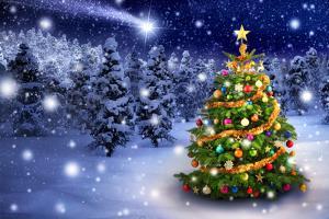 Christmas Tree in Snowy Night by Smileus