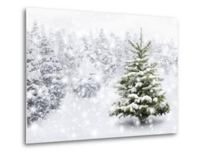 Fir Tree in Thick Snow