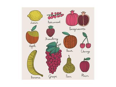 Bright Fruit and Berries Set in Vector. Lemon, Redcurrant, Apple, Strawberry, Banana, Grape, Pomegr