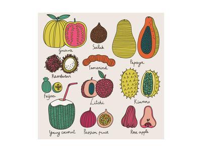Bright Tropical Fruit Set in Vector. Guava, Salak, Papaya, Rambutan, Tamarind, Feijoa, Litchi, Kiwa