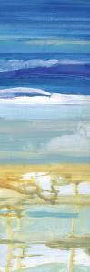 Beachy B by Smith Haynes
