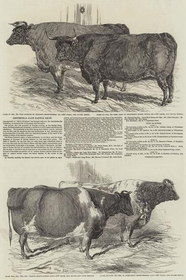 Smithfield Club Cattle Show-Harrison William Weir-Giclee Print