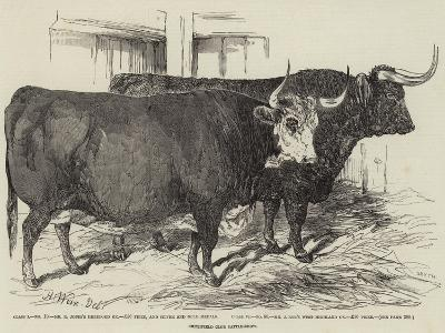 Smithfield Club Cattle-Show-Harrison William Weir-Giclee Print