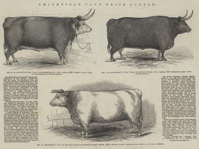 https://imgc.artprintimages.com/img/print/smithfield-club-prize-cattle_u-l-pvmyde0.jpg?p=0