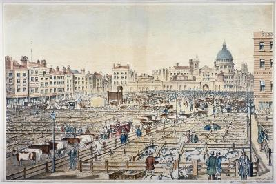 Smithfield Market, City of London, 1855--Giclee Print