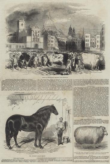Smithfield, the Great Christmas Market--Giclee Print
