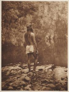 Smithsonian Libraries: The Apache