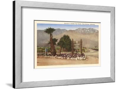 Smoke Tree Ranch, Palm Springs, California