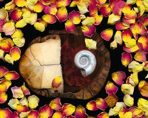 Snail painted Rose Petals