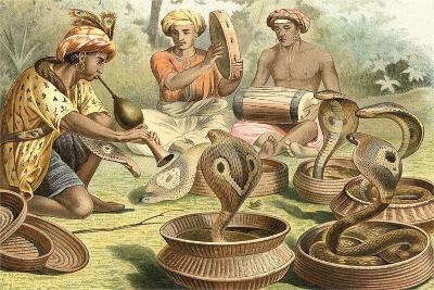 Snake Charmers and Cobras--Art Print