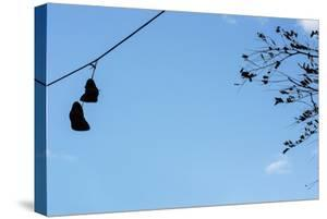 Sneakers on a Wire