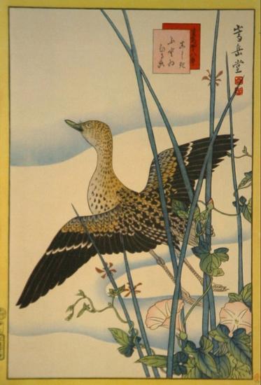 Snipe, Smooth Cane and Morning Glory-Sugakudo-Art Print
